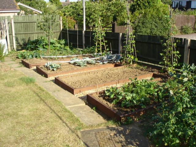 kitchen garden design ideas photo - 6