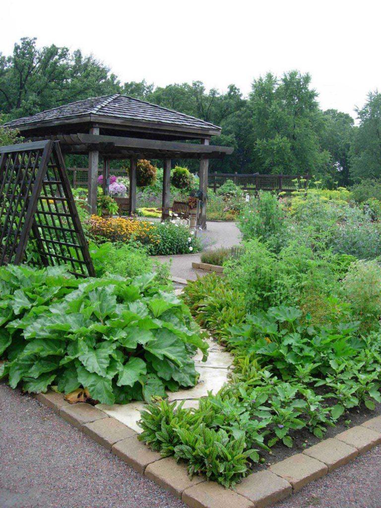 kitchen garden design ideas photo - 8