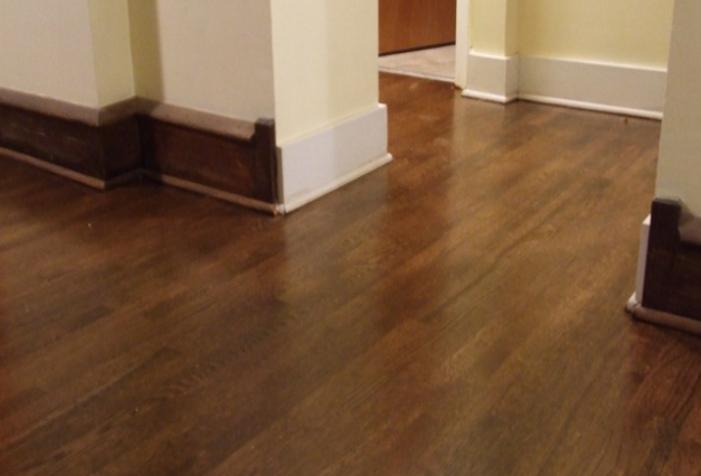 laminate wood flooring dogs photo - 10