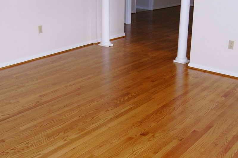laminate wood flooring dogs photo - 7