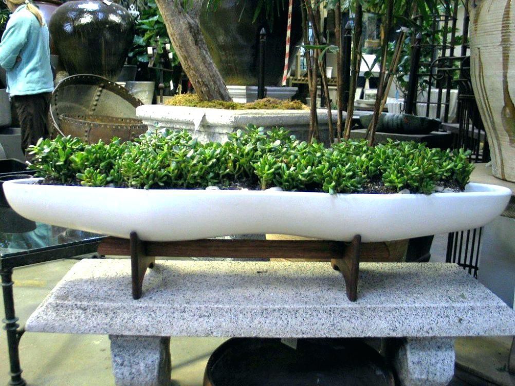 large designer garden pots photo - 4