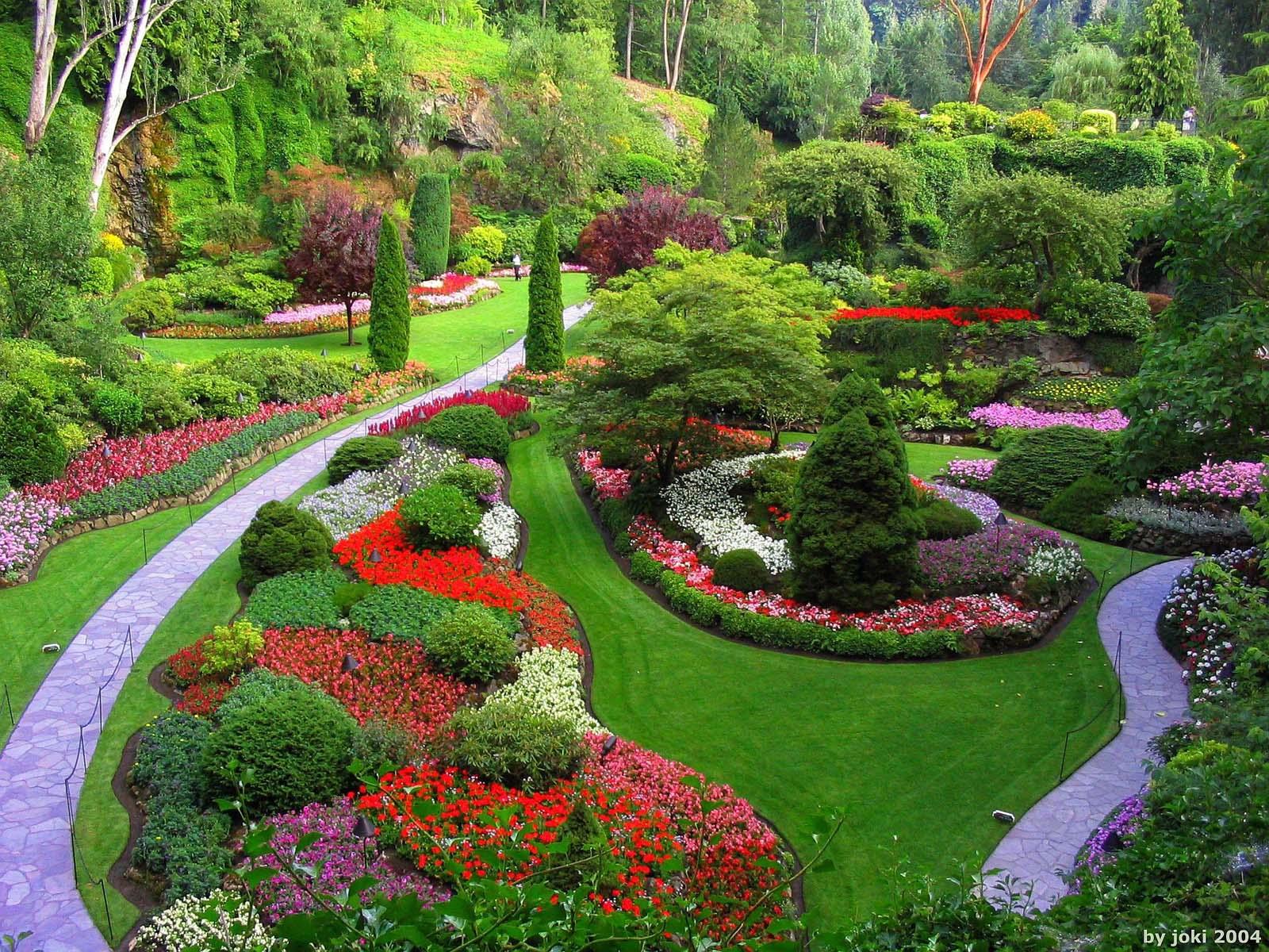 large flower garden design photo - 10
