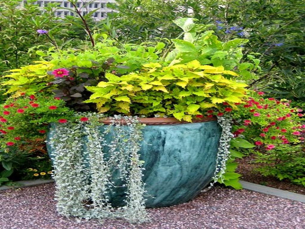 large flower garden design photo - 3