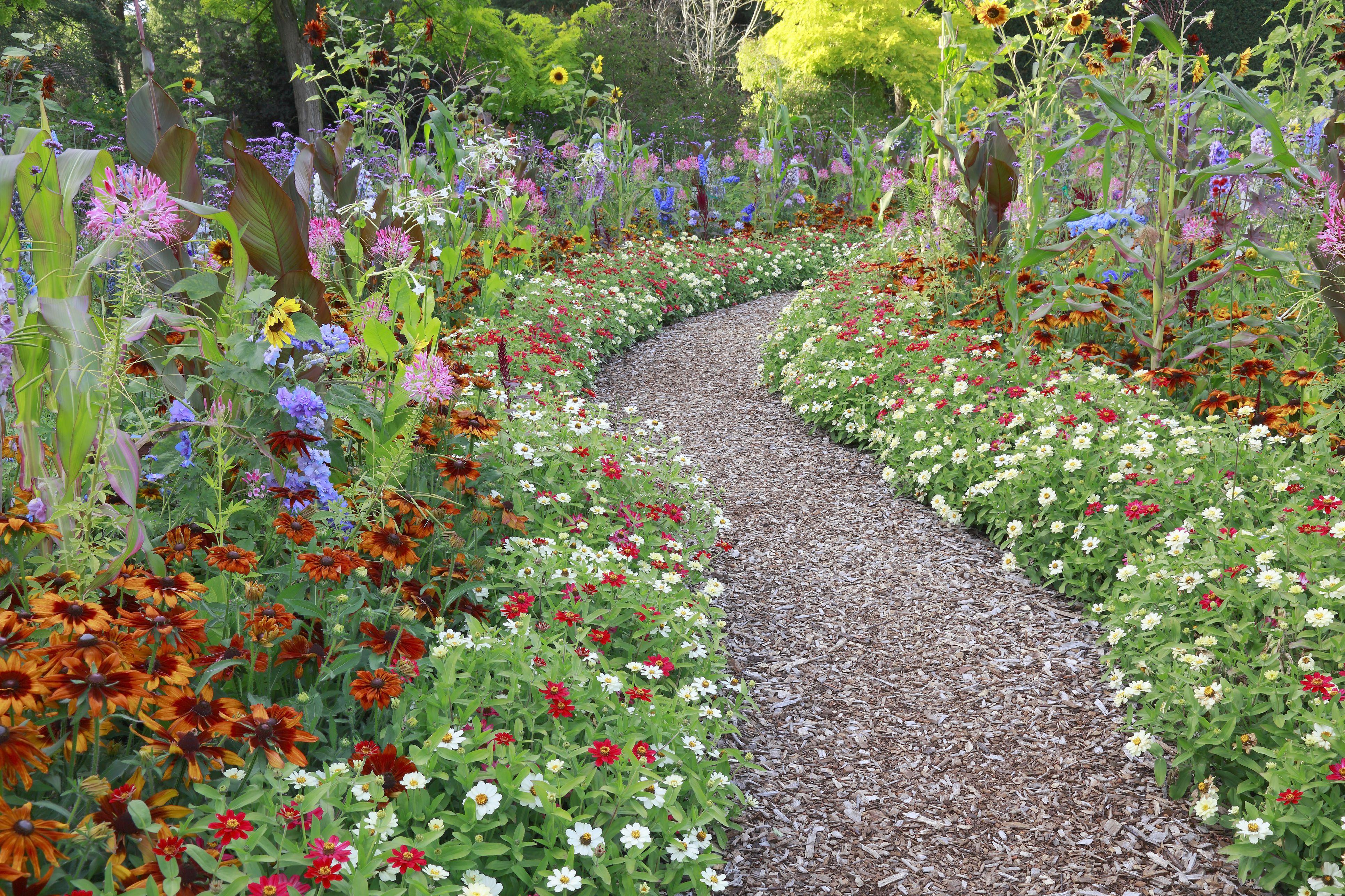 large flower garden design photo - 4