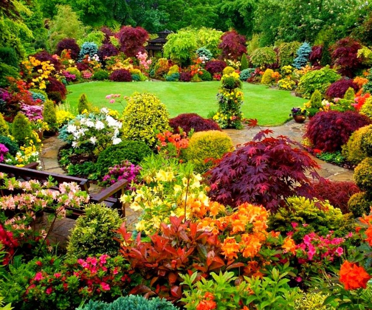 large flower garden design photo - 6