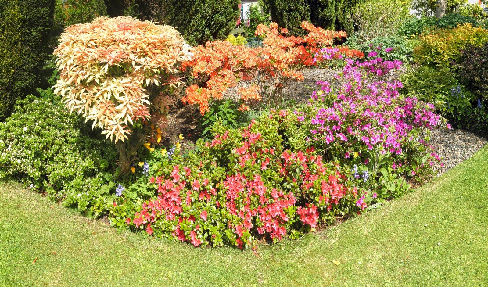 large flower garden design photo - 7
