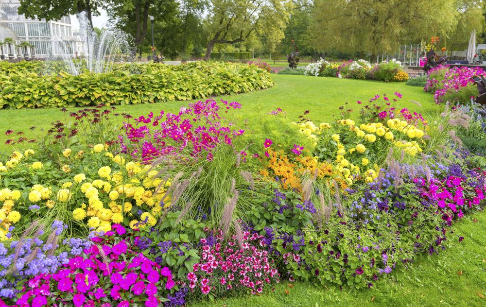 large flower garden design photo - 9