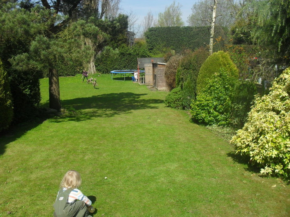 Large garden design ideas | Hawk Haven