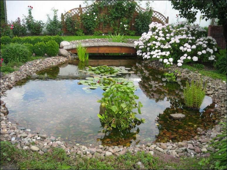large garden pond designs photo - 2