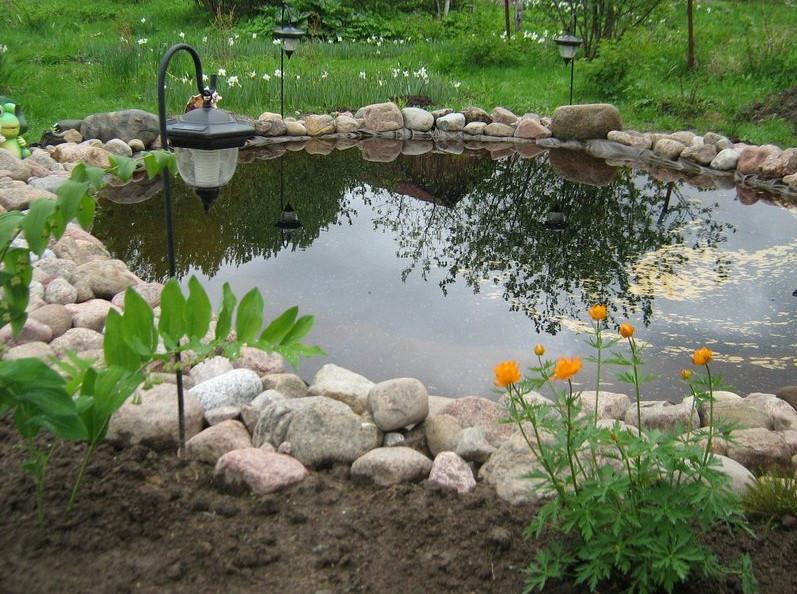 large garden pond designs photo - 6
