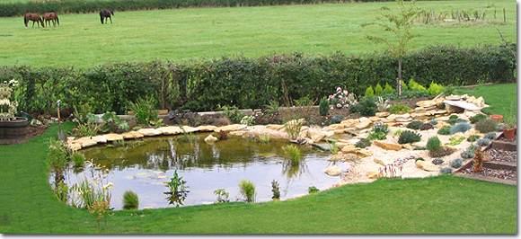 large garden pond designs photo - 7