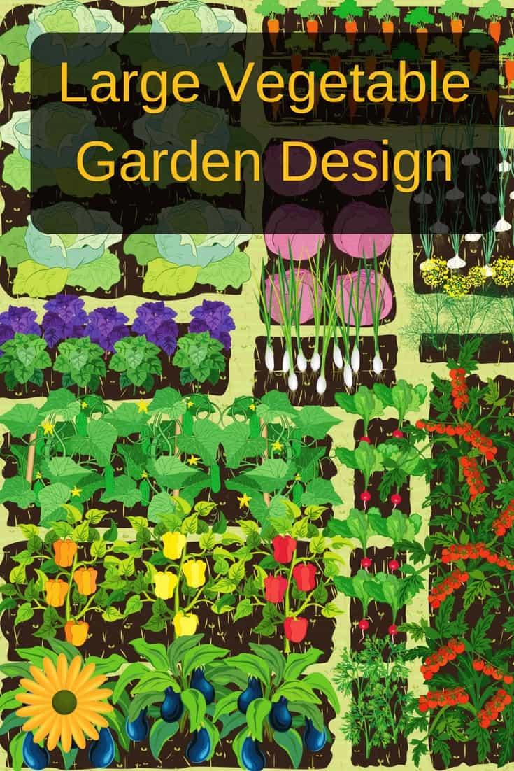large vegetable garden design photo - 1