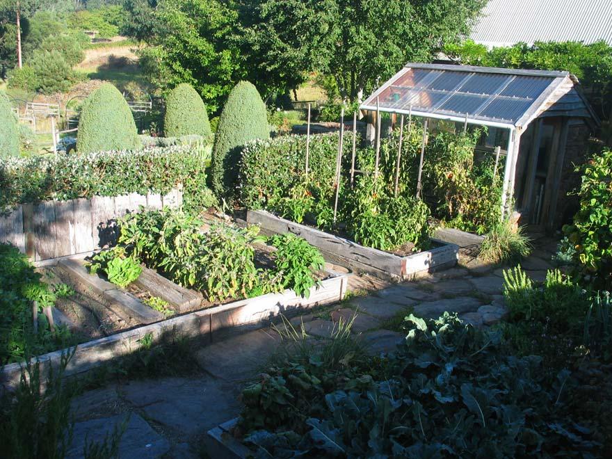 Large Vegetable Garden Design Photo   10