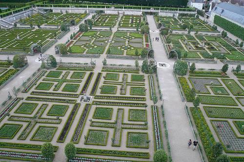 large vegetable garden design photo - 3