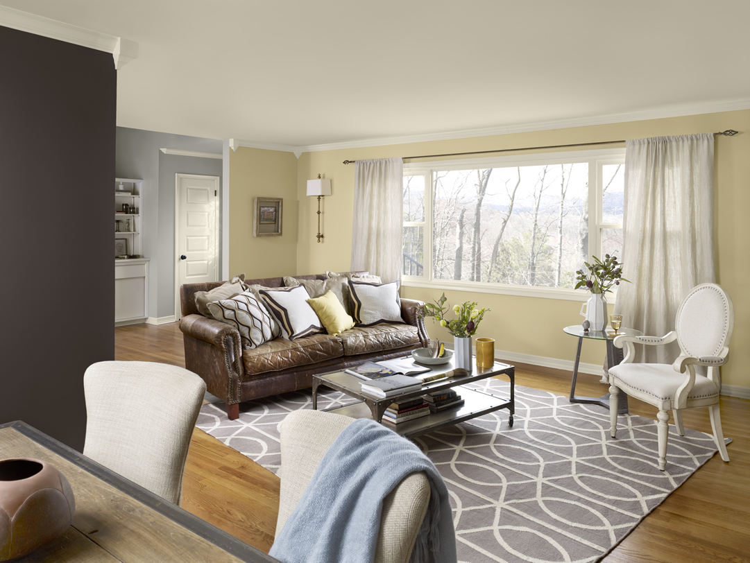 living room designs and colour schemes photo - 8
