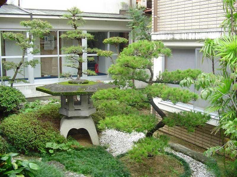 mini japanese garden design ideas photo - 3