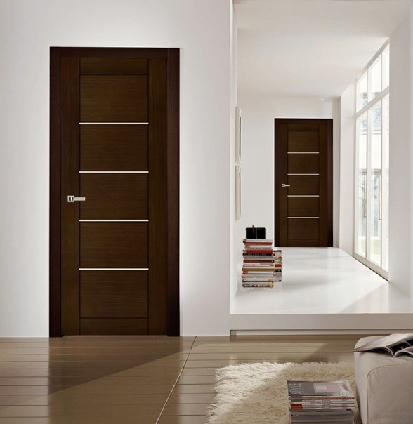 modern door designs for rooms photo - 2