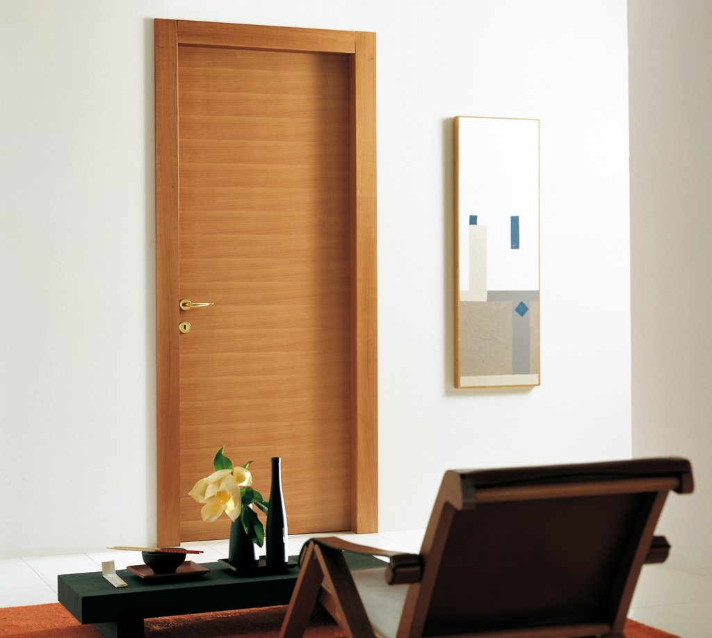 modern door designs for rooms photo - 8