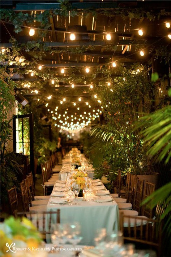 outdoor dinner party lights photo - 1