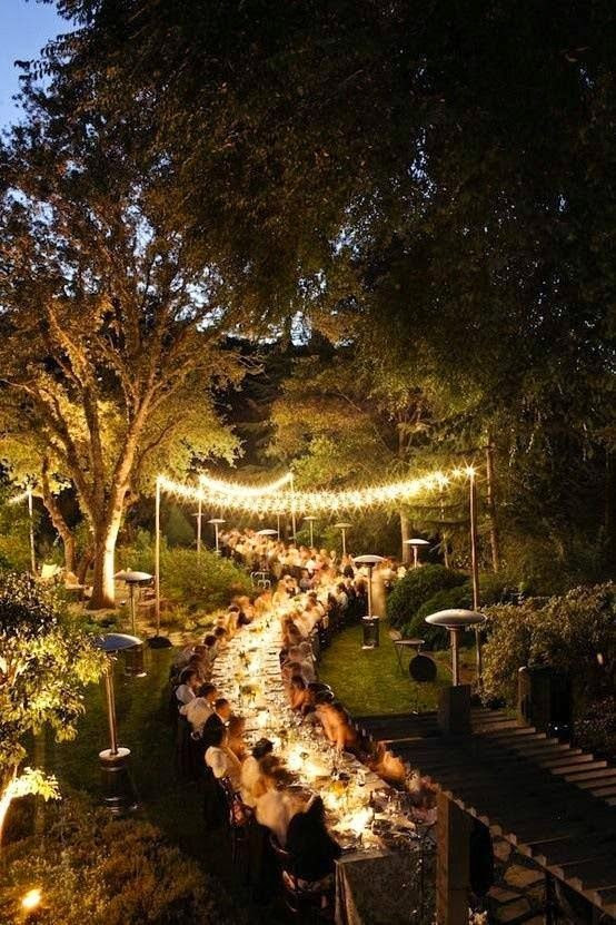 outdoor dinner party lights photo - 9