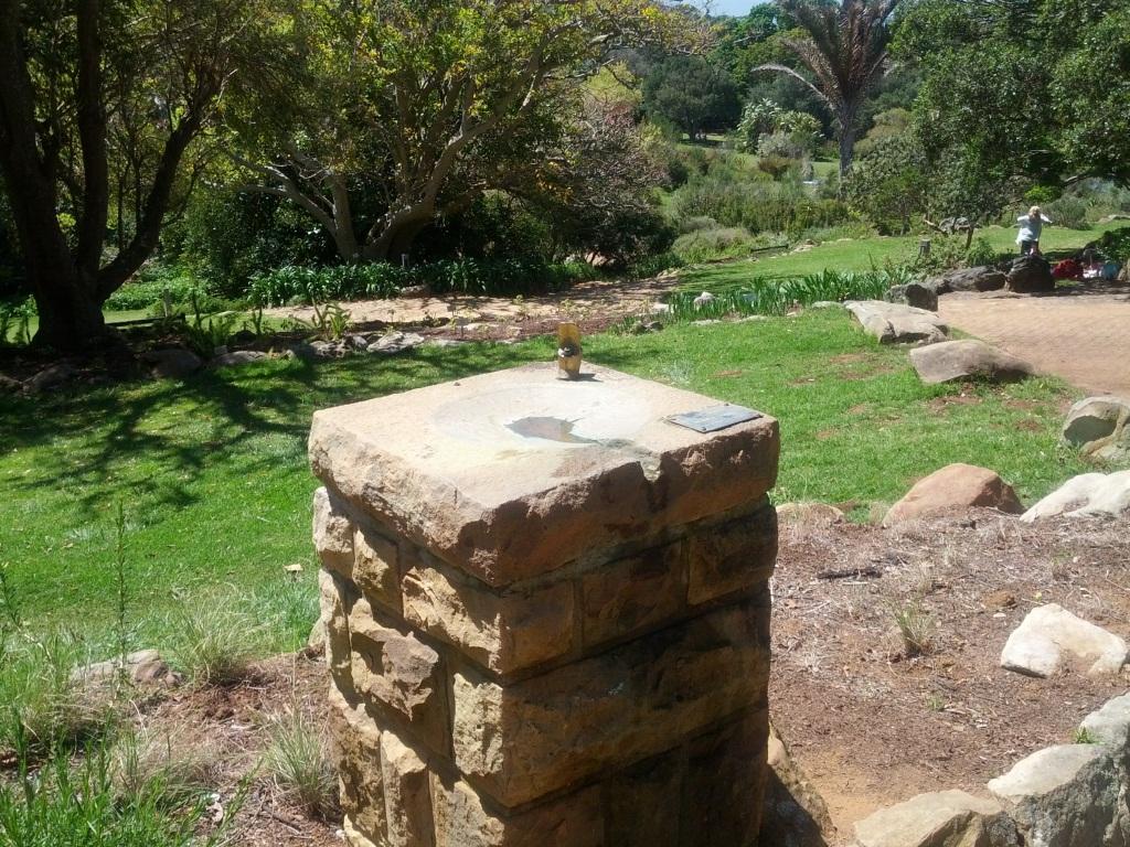 outdoor garden drinking fountain photo - 7
