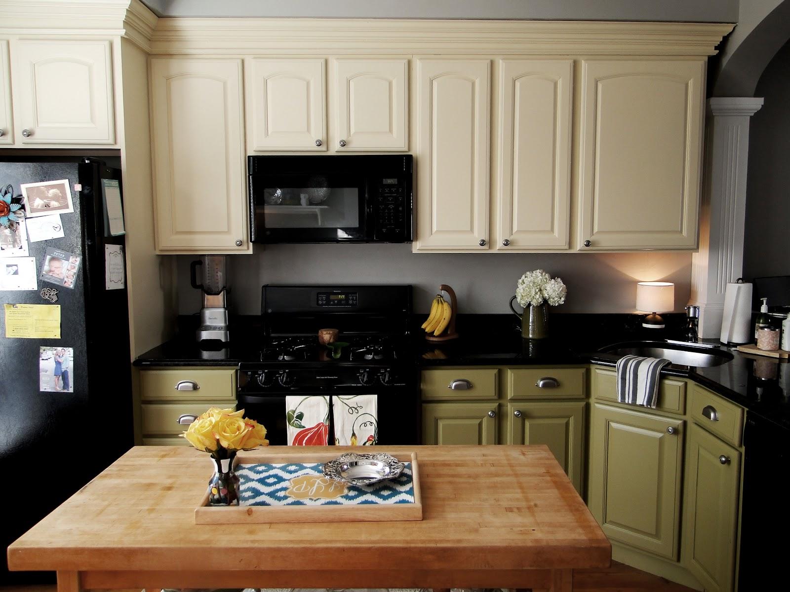 paint kitchen cabinets ideas what color photo - 8