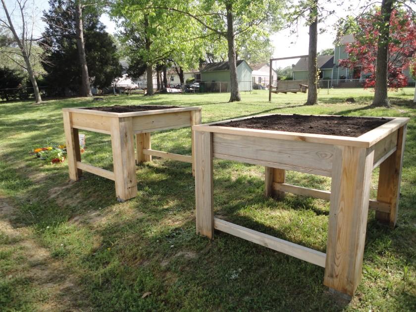 planning an urban vegetable garden photo - 10