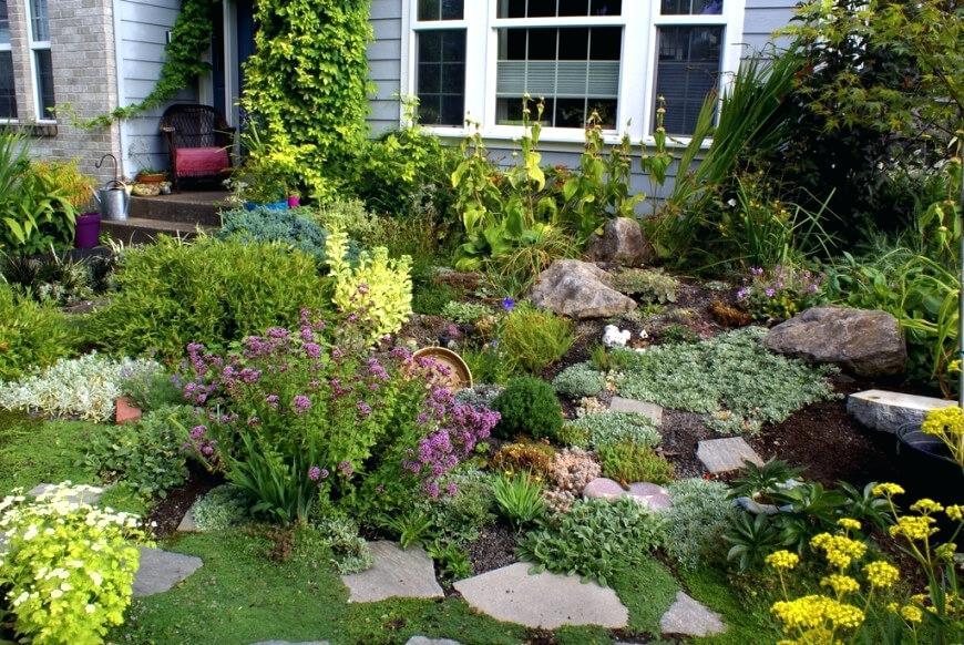 plants for rock gardens zone 4 photo - 9