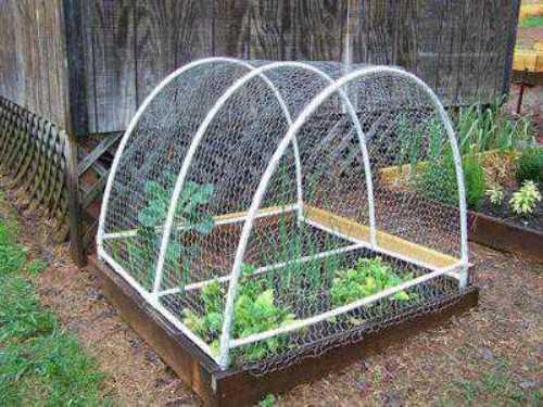 raised bed garden fencing ideas photo - 3