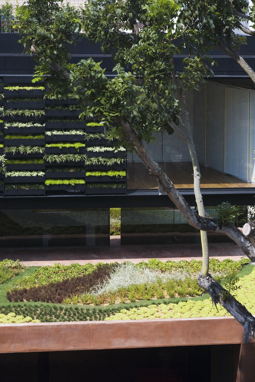roof terrace garden design photo - 2