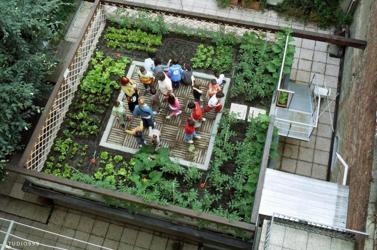 Roof Top Food Garden Photo