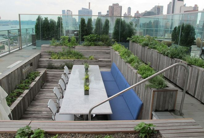 rooftop edible gardens photo - 4