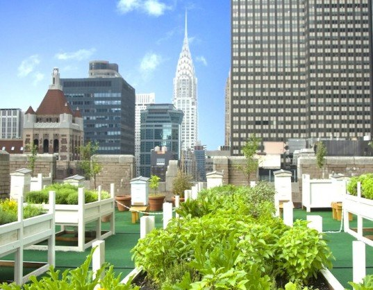 rooftop garden fifth avenue photo - 10