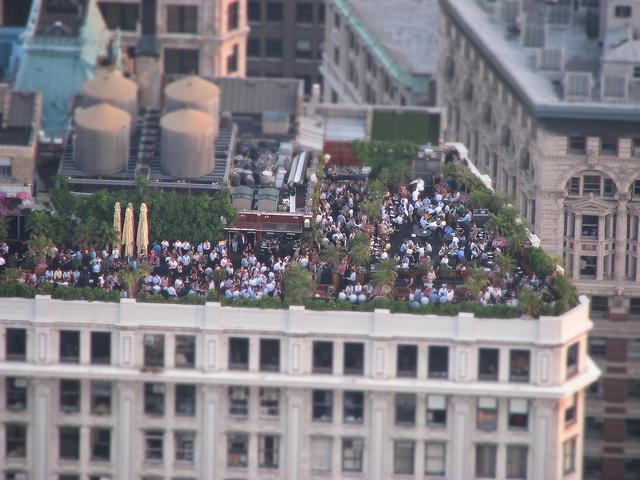 rooftop garden fifth avenue photo - 7