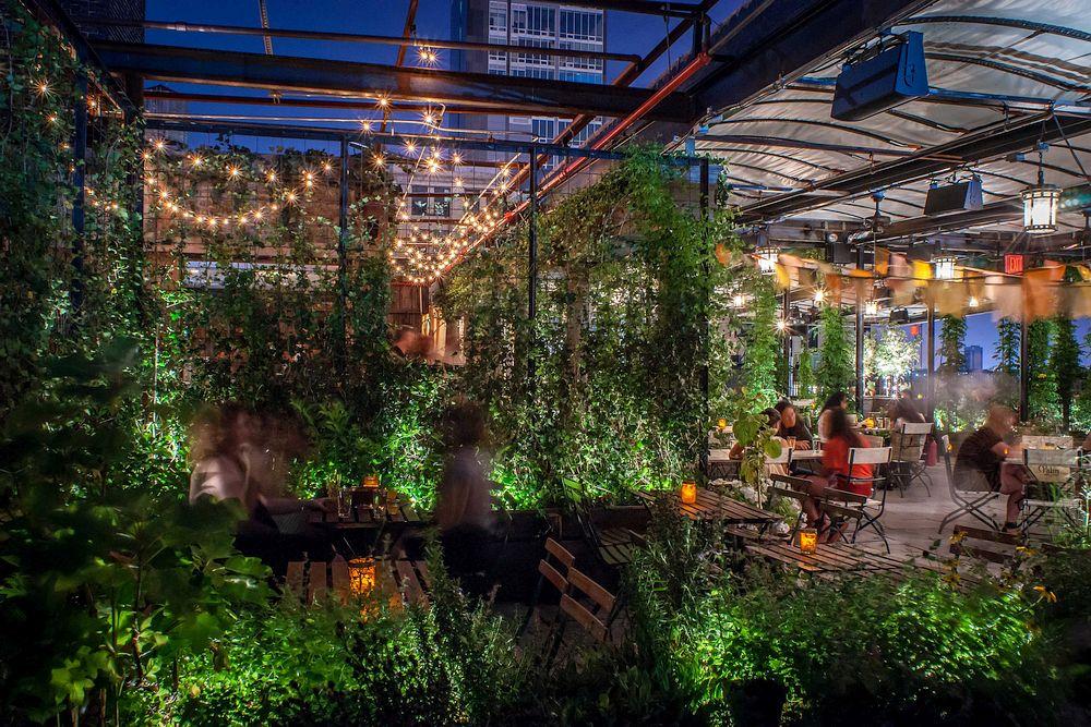 rooftop gardens bar photo - 10