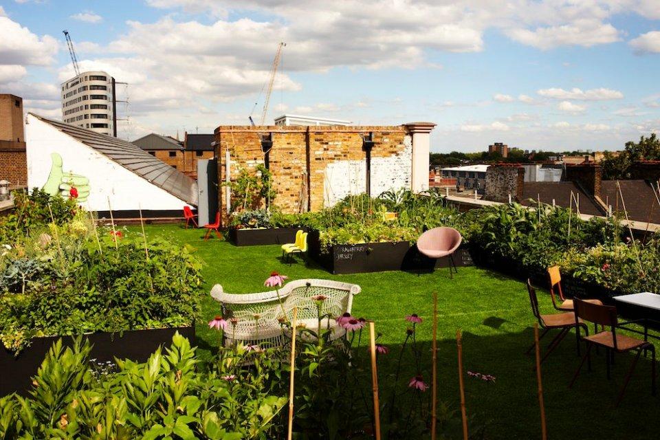 rooftop gardens bar photo - 5