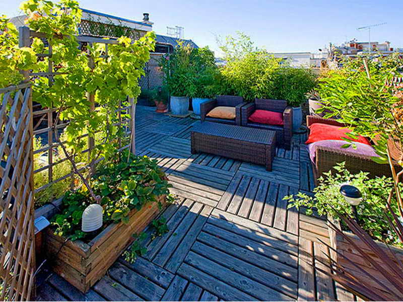 rooftop gardens ideas photo - 6