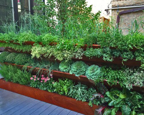 Rooftop vegetable garden ideas | Hawk Haven