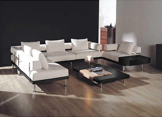 Sectional Sofas Modern Contemporary Photo   4