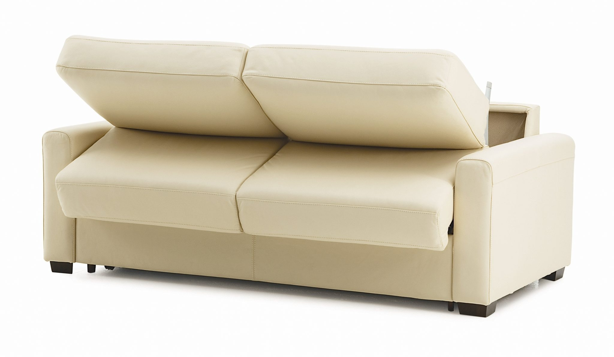 Sleeper Sofa Best Hawk Haven