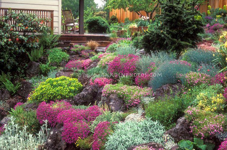 sloped rock garden ideas photo - 10
