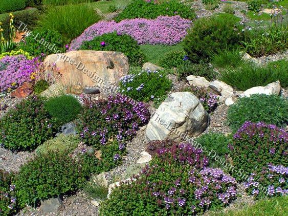 sloped rock garden ideas photo - 8