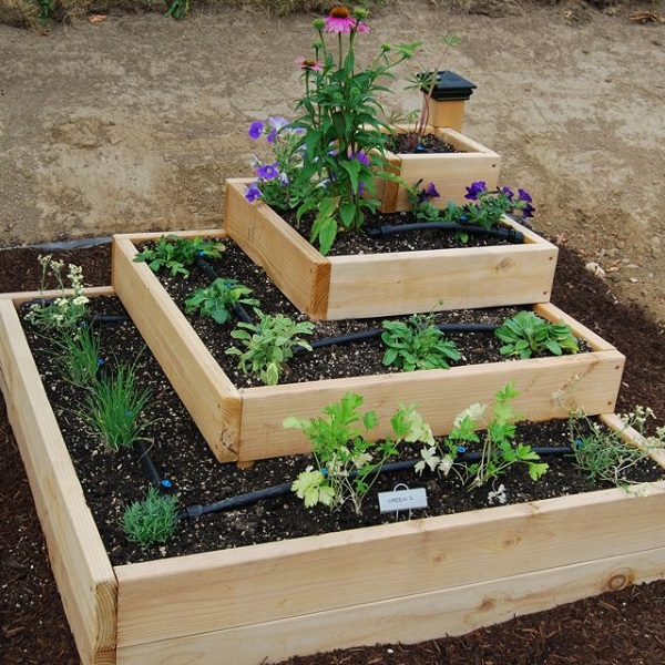 small easy vegetable garden photo - 10