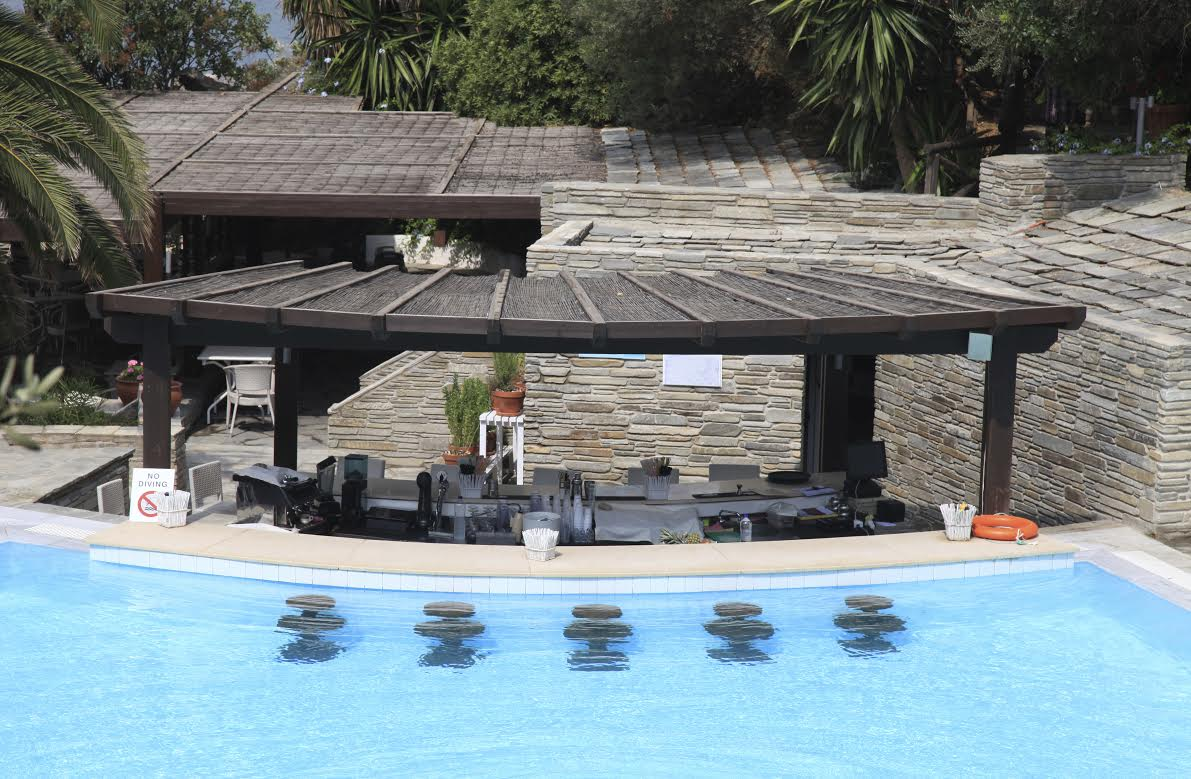swimming pool designs with bar photo - 3