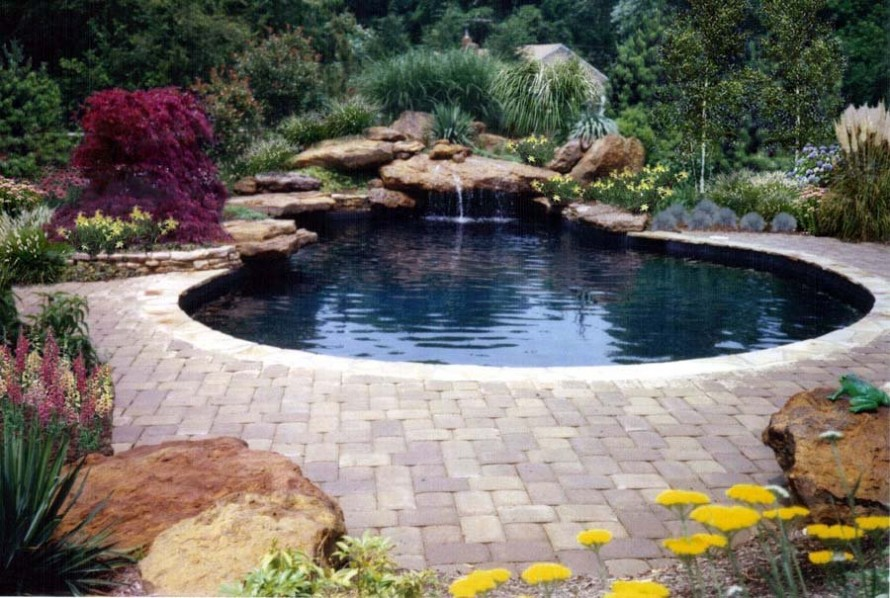 swimming pool designs with rocks photo - 1