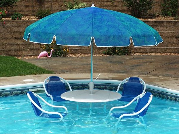 Unique swimming pool accessories | Hawk Haven