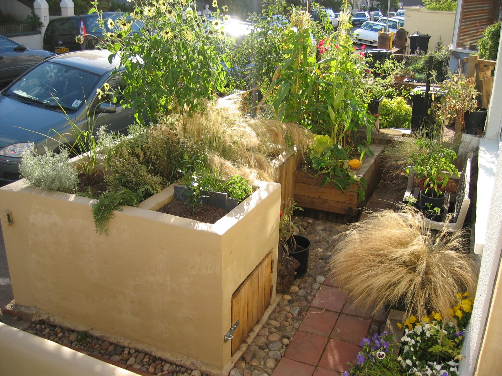Urban vegetable gardening   Hawk Haven