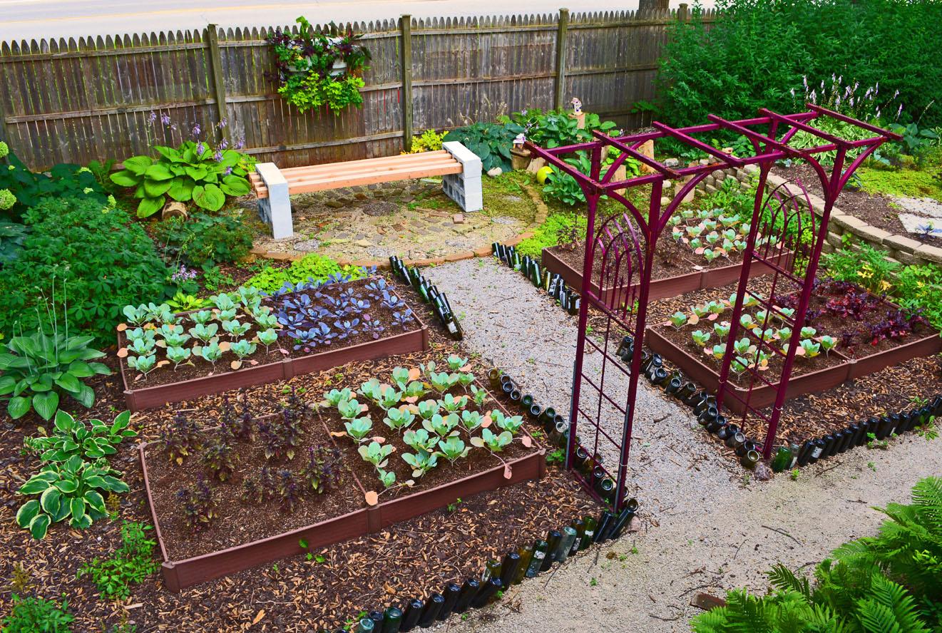 veg garden design ideas photo - 1