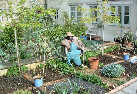 veg garden design ideas photo - 10