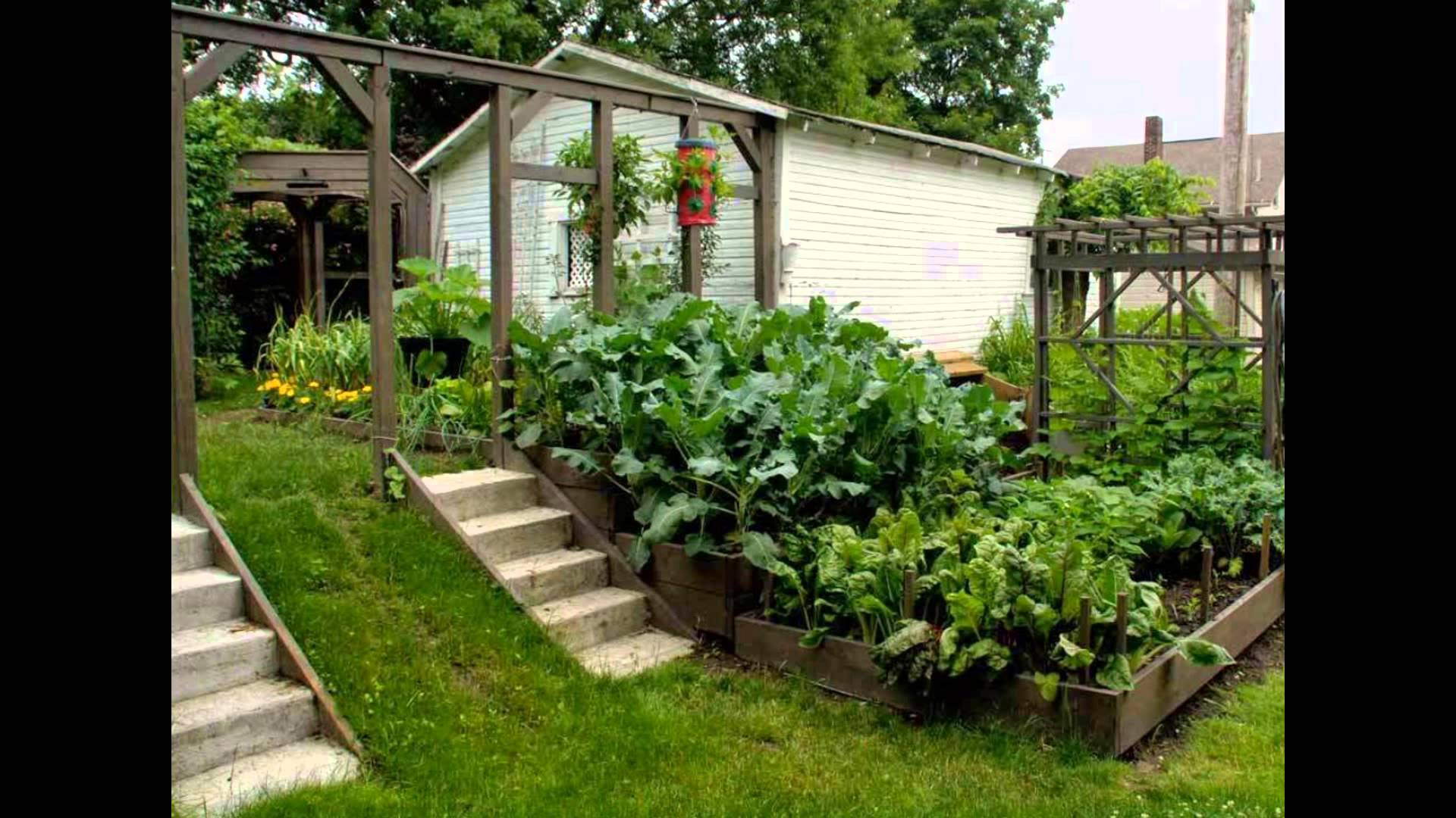 vege garden design ideas photo - 10